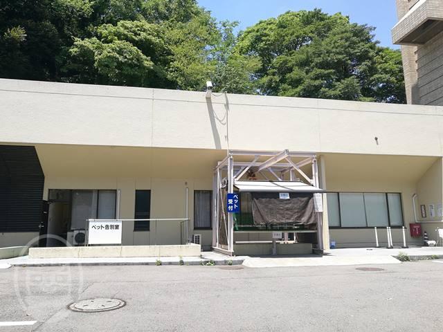 横浜市ペット火葬3