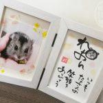 自治体ペット火葬(横浜市)でペットを見送りました。気になる手続きや最後のお別れについて。