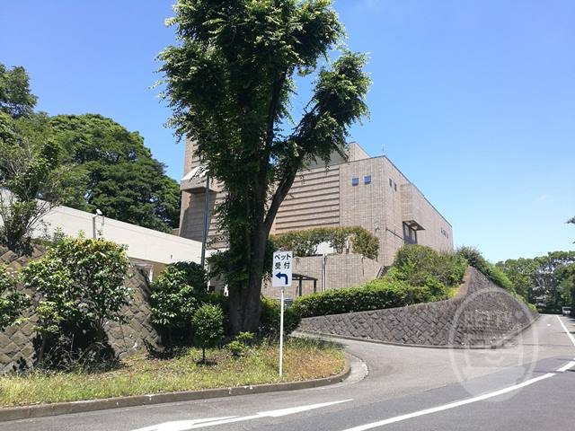 横浜市ペット火葬2